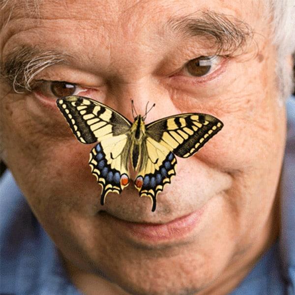 Papa Papillon | Landanzeiger-Shopping
