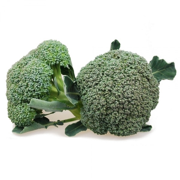 Broccoli Bio | Landanzeiger-Shopping