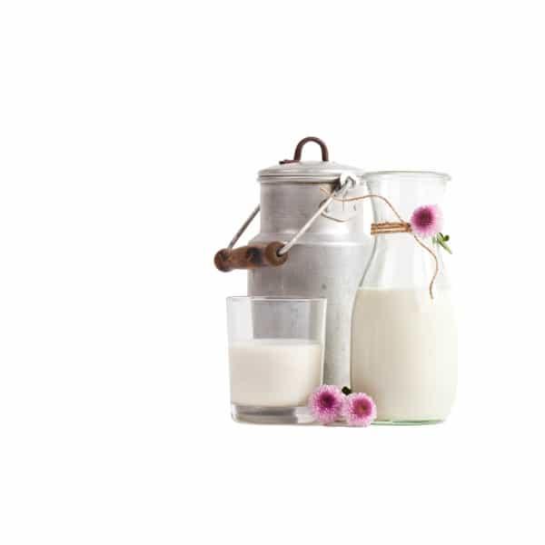 Kuhmilch Bio in Flaschen | Landanzeiger-Shopping