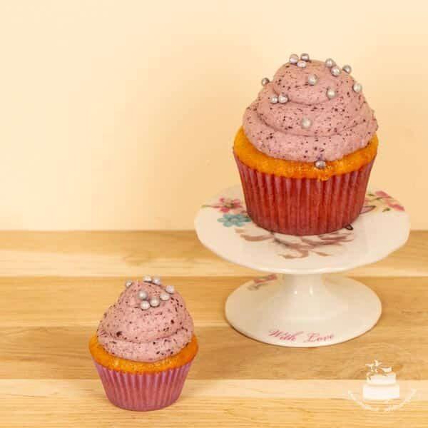 Mini Cupcake Vanille-Heidelbeer 02 |Landanzeiger-Shopping
