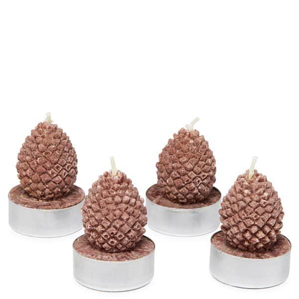 Tannzapfen Teelichter 4 Stück | Landanzeiger-Shopping