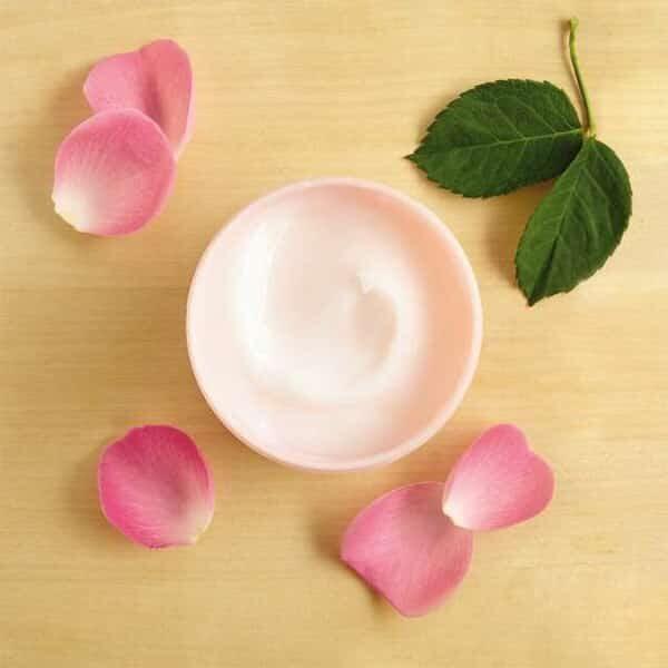 British Rose Body Yoghurt 02 | Landanzeiger-Shopping
