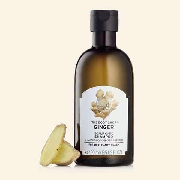 Ginger Anti-Schuppen Shampoo (Big Size) | Landanzeiger-Shopping