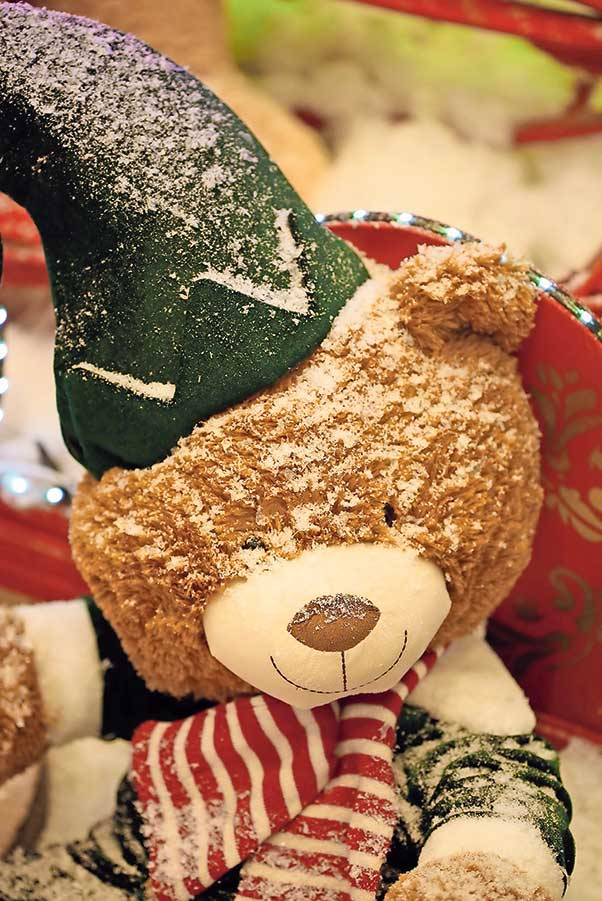 Teddy im Winterwunderland Perry Center 02 | Landanzeiger-Shopping