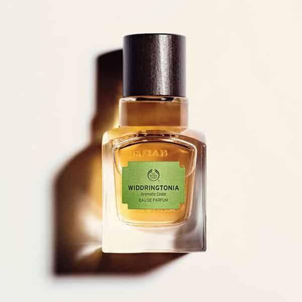 Widdringtonia Eau de Parfum   Landanzeiger-Shopping